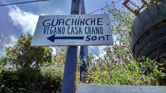 FOTO 7.- GUACHINCHE VEGANO