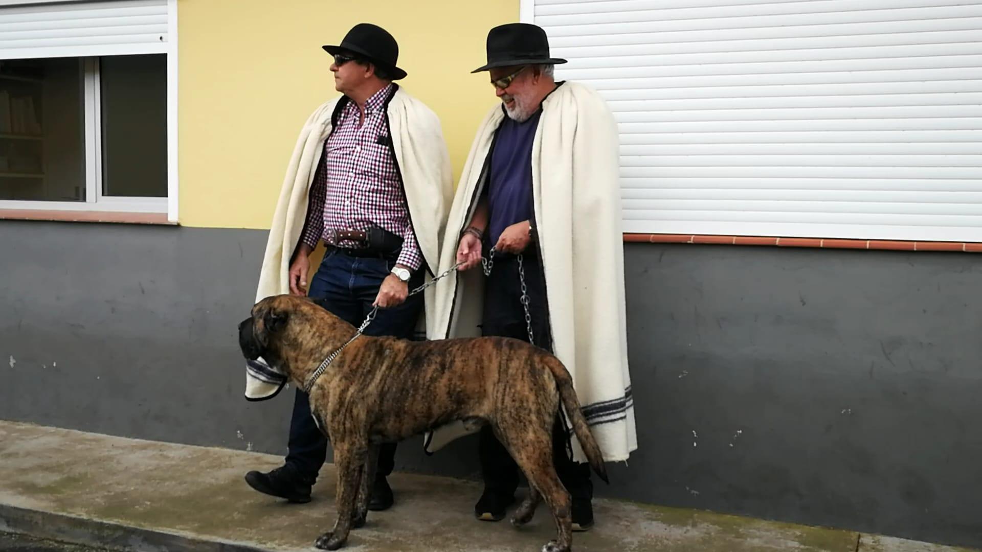 FOTO 5.- SULTÁN, CAPOTÍN Y FÓFORO